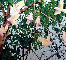 Corellas by Mellissa Read-Devine