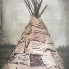 Birch Teepee by Deborah  Benoit
