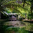 Alfred Nicholas Gardens Boathouse by Bevlea Ross