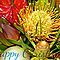 *Christmas Greeting Card - Gorgeous Flower Cards*