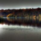 Autumn at Bewl Water  by larry flewers
