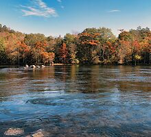 Fabulous Mountain Fork Park by Carolyn  Fletcher