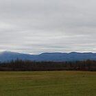 Catskills by John Schneider