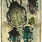 Bug collection Henri Fabre by aceshirt
