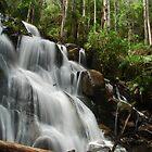 Toorongo Falls by Kylie Reid