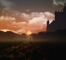 Another Fairytale III by Kerem Gogus