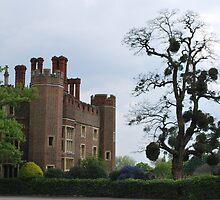 Hampton Court by Helen Greenwood