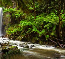 Hopetoun Falls in The Otway rainforest, Australia by hangingpixels