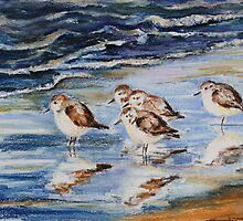 Little Stints by Barbara Pommerenke