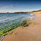 Point Peron Beach by Glen  Robinson