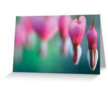 Dicentra spectabilis Greeting Card