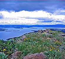 Eagle Lake from Gallatin Peak by Karen  Kennedy Samoranos