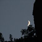 Sitting Moon by cishvilli