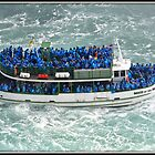 Maid of the Mist by Mikell Herrick