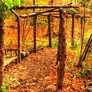 Autumn Arbor by shutterbug2010