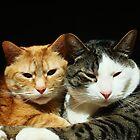Best Friends by CADavis