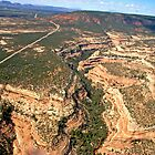 aerial, Red Rock Plateau area, Utah by Margaret  Hyde