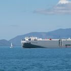 Car Carrier versus small Yacht, Townsville, Queensland. by Rita Blom