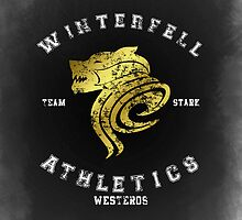 TEAM STARK ATHLETICS - WHITE by amanoxford