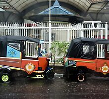 Bajaj in the rain by misterhan