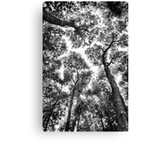 Natural Fit Canvas Print