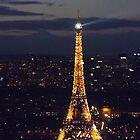 Paris 2013 by graceloves