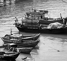 Fishing Boats in Nha Trang, Vietnam  by Lucinda Walter