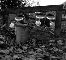 Watering cans by kateemay