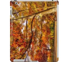 Fall Road,Chestnut Hill, Massachusetts iPad Case/Skin