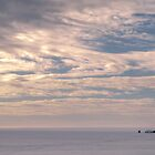 Morning on the Lake by RainaRaina