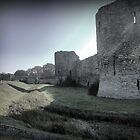 Pevensey Castle (2) .. The Wall by Larry Davis