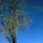 Mirrored Lake 2 by JDToomer
