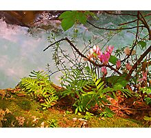 Blue Waters of Banias Photographic Print