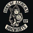 Sons of Alchemy by devildrexl