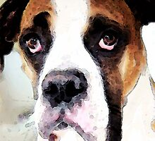 Boxer Art - Sad Eyes by Sharon Cummings