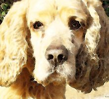 Cocker Spaniel Art - Mellow Yellow by Sharon Cummings