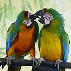 Loving Birds by photobylorne