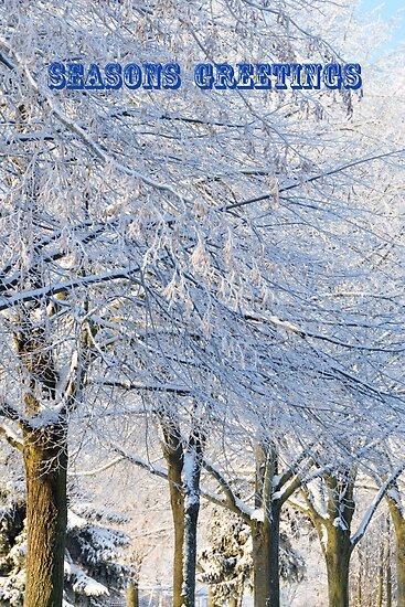 Seasons Greetings by Heather Thorsen