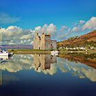 Lochranza Castle, Isle of Arran by catrionam