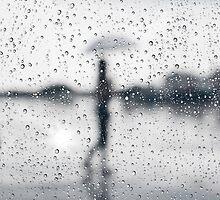 rainy day by naphotos