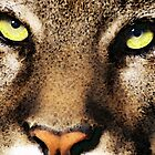 Cougar Eyes by Sharon Cummings