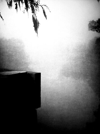 the fog  by Jamie McCall