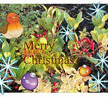 Christmas berries card by Christopher Ware