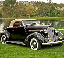 1940 Packard 120 Convertible by DaveKoontz