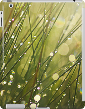 After the Rain iPhone case by Irina Chuckowree