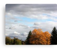 Fall Feelling 2 Canvas Print