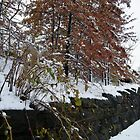 Sixth Street Embankment in Snow, Abandoned Pennsylvania Railroad Embankment, Jersey City, New Jersey by lenspiro