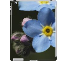Forget-Me-Nots 1 iPad Case/Skin