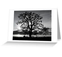 Lone Oak Silhouette Greeting Card