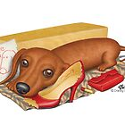Dalton (Dachshund) by Danny Gordon